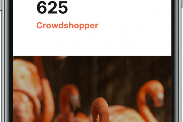 Crowdshopping_Success_Stories_03-min